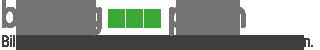 BILDUNG – PARTH Logo